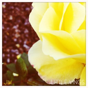 jimlittlewings_flower